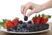 Pick up berries — Stock Photo