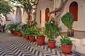 средиземноморском двор — Стоковое фото