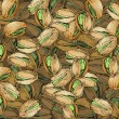 Hand Drawn Pistachios Texture — Vector de stock