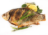 Fried fish crucian, carp Isolated — Stock Photo