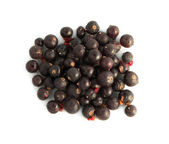 Freeze-dried berries, blueberries isolated — Stock Photo