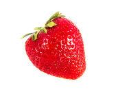Strawberry isolated — Stock Photo