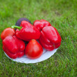 White plate with red peppers on a green grass — Stock Photo