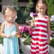 Sweet little girls in a country yard with flowers in their hands — Stock Photo #26639925