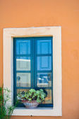 Traditional greek style windows with flowerpot on him — Stock Photo