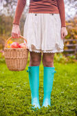 Close-up of basket with yellow, red apples and rubber boots on a young girl — Stock Photo