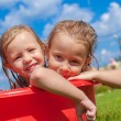Two cute little happy girls having fun in small pool on the courtyard outdoor — Stock Photo #32211413