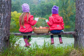 Rear view of two beautiful sisters on bench by the lake with a basket of red apples in their hands — Stock Photo