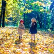 Two beautiful adorable girls walking in the fall forest at warm sunny autumn day — Foto de Stock