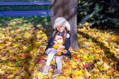 Little beautiful girl on the autumn meadow in a sunny fall day — Stock Photo