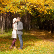 Young Couple kissing in autumn park on a sunny fall day — Stock Photo