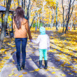 Back view of Young mother and her adorable daughter walking in yellow autumn forest on a warm sunny day — Stock Photo #34007711