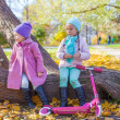 Little beautiful girl with scooter in the autumn park — Stock Photo #34011177
