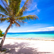 Perfect white tropical beach on an exotic island — Stok fotoğraf