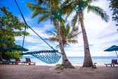 Romantic cozy hammock in the shadow of palm on tropical beach — Stock Photo