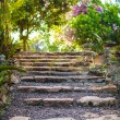 Old stone steps in a cozy little boutique hotel — Stock Photo