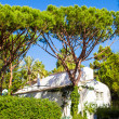 Small house among the trees in village at Europe — ストック写真