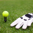 Golf equipment: ball and glove on green grass — Stock Photo