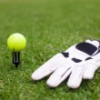 Stock Photo: Golf equipment: ball and glove on green grass