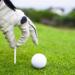 Stock Photo: Hand placing golf-ball on tee over beautiful golf course with green grass