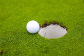 Golf ball go to the hole — Stock Photo