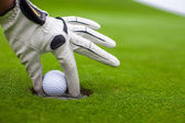 Man's hand putting a golf ball into hole on the green field — Stock Photo