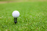 Golf ball on tee in a beautiful green golf grass — Stock Photo