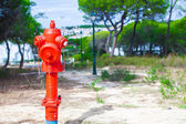 Red Fire hydrant on nature in Europe — Stock Photo