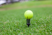 Golf ball on tee in a beautiful golf club — Stock Photo