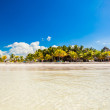 Tropical deserted perfect beach on island — Stock Photo