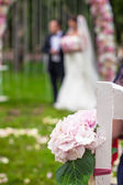 Wedding benches and flower for ceremony outdoors — Stock Photo