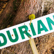 Sign saying durian — Stock Photo