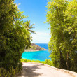 Road to the turquoise ocean and beach in Seychelles — Stock Photo