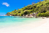 Beautiful turquoise exotic tropical beach at Seychelles — Stock Photo