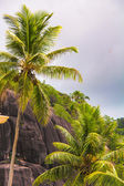 Large smooth monumental boulders in the Seychelles — Stock Photo