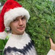 Portrait of Young man in Santa hat buying christmas tree and and showing thumbs up — Stock Photo