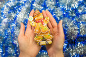 Colorful gingerbread man in female hands — Foto de Stock
