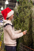 Young man buying green Christmas tree in the market — Stok fotoğraf