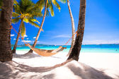 View of cozy straw hammock on the tropical white beach — Stock Photo