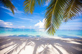 Perfect white beach with green palms and turquoise water — Stock Photo