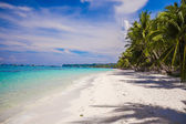 Tropical beach with beautiful palms and white sand, Philippines — Stock Photo