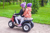 Little adorable sisters sitting on bike in green park — Stockfoto