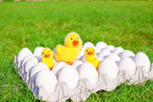 Closeup tray white eggs with the symbols of Easter yellow chickens — Stock Photo