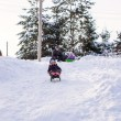 Little cute girl pulls a sled in warm winter day — Stock Photo #41073727