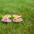 Closeup of bright flip flops on green grass — Stok Fotoğraf #41243511