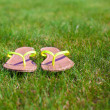 Closeup of bright flip flops on green grass — Foto Stock #41243511