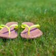 Closeup of bright flip flops on green grass — Stok Fotoğraf #41243531