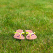 Closeup of bright flip flops on green grass — Stock Photo #41243897