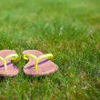 Closeup of bright flip flops on green grass — Stock Photo #41243925
