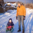 Stockfoto: Young dad sledding his little daughter on sunny winter day